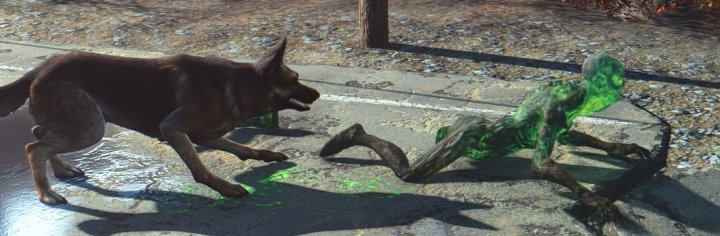Dogmeat can take off limbs. Good dog.