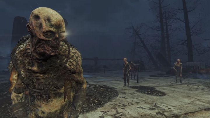 Ghoul in Far Harbor
